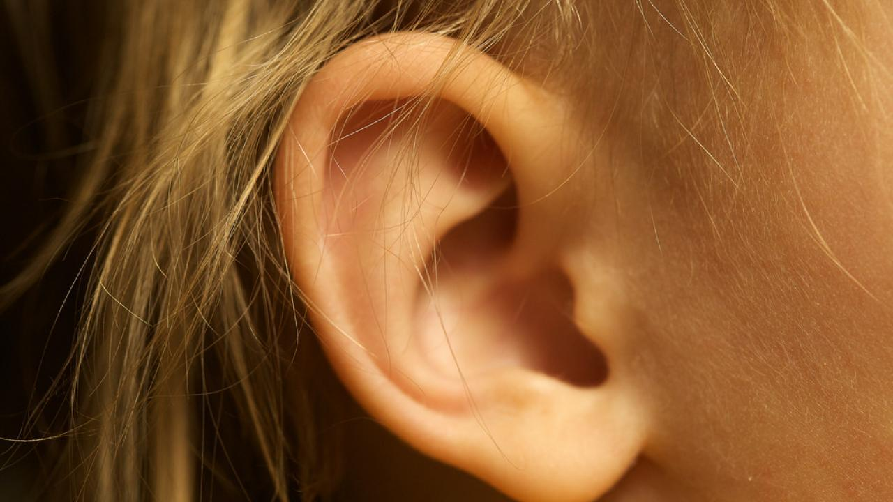 Picture of an ear