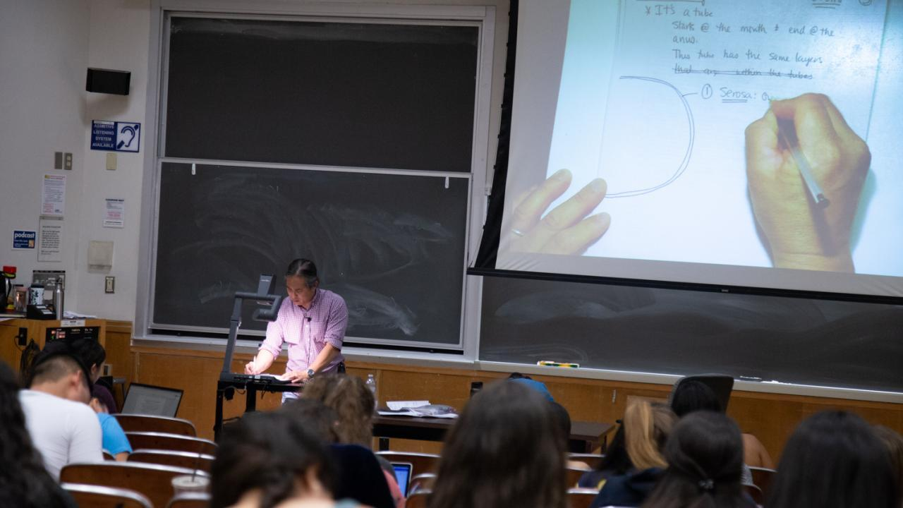 picture of erwin teaching in a lecture hall